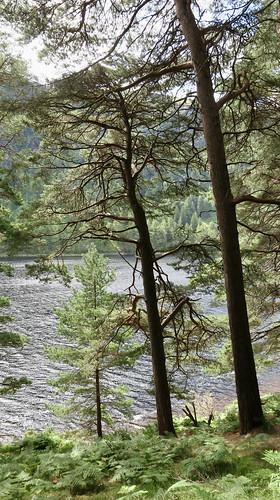 Glendalough upper Lake.