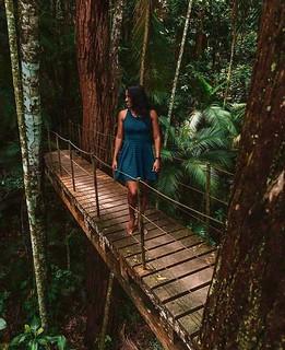 Circuito Floresta da Tijuca RJ - 2021