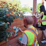 SITC 14 - mural painting on parklet