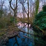 River Loddon near to Upper Mill