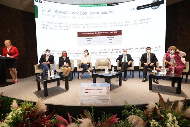 25/08/2021 Plenaria. Alianzas estratégicas desarrollo económico