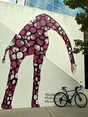 2021 Bike 180: Day 102 - Giraffe