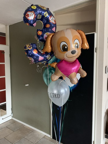 Ballonboeket Paw Patrol Verjaardag 3 Jaar