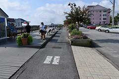 Shoreline Bike Path