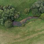 Loddon -0576 Petty's Brook