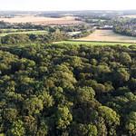 Loddon -0558 from above Virnells Copse