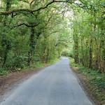 Loddon -182740 Ashmoor Lane