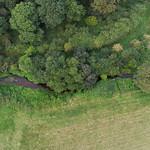 Loddon -0579 Petty's Brook