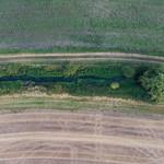 Loddon -0601 River Loddon