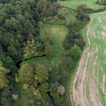Loddon -0583 Petty's Brook near Long Copse