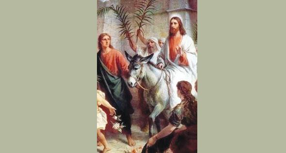 أحد الشعانين.. بهجة استقبال «السيد المسيح» بالسعف - الأستاذ أشرف أيوب معوض 5