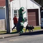Dinosaur spotting