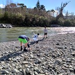 Skimming stones into the water.