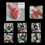 A wonderful sculpture of the heart!