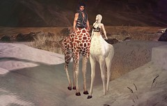 coming soon to We Love Roleplay - Giraffataur - opens 4th Sept at 1pm SLT