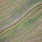 2nd PDI League 1 - Landscape - Greenscape by Paul Evenett