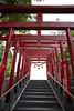 Photo:20210811 South-Anjo Shrines 6 By BONGURI