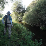 Fly Fisherman on the Loddon 2196-3583