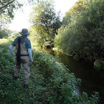 Fly Fisherman on the Loddon 2196-3582