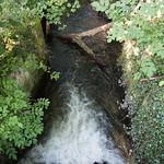 Decoy Pond Sluice on the River Loddon