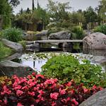 Botantic Garden Stavanger by David Morris