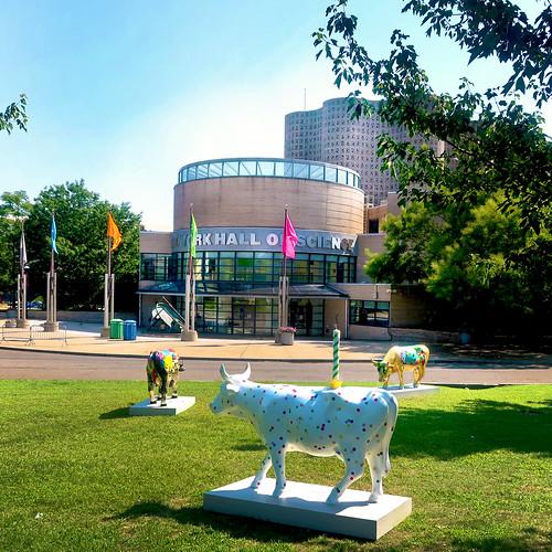 New York Hall of Science & Fiberglass Cows