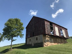 Lone Tree, Old Barn