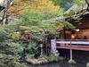 Photo:池と紅葉 By cyberwonk