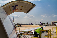 N135FE FedEx | Boeing 767-3S2F(ER) | Memphis International Airport