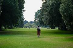 Around Kew