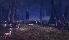 A gathering in a Willowert Forest......must be very serious