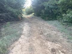 Jordan Park Trail