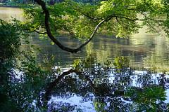 Greenbelt Lake