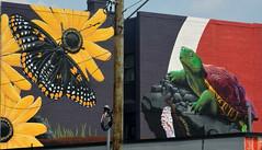 Street Art U of M MD 9-21 (1)