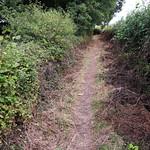 Loddon Valley Riverside Pathway