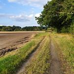 Loddon Valley Path