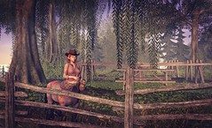 Visit to Evergarden Equestrian :)