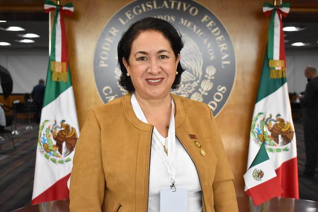 Dip. Socorro Irma Andazola Gómez