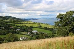 Devon, August 2021