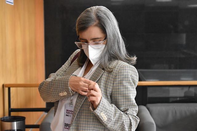 Dip. María Wendy Briceño Zuloaga