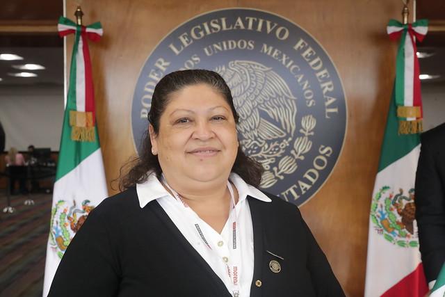 Dip. Olga Leticia Chávez Rojas
