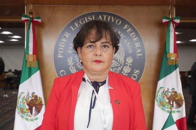 Dip. Leonor Coutiño Gutiérrez