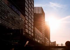 Avenue Willy Brandt, un matin ensoleillé à Lille
