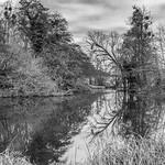 Riverside symmetrics by Iain Houston