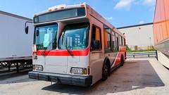 (Retired) WMATA Metrobus 2006 Orion VII CNG #3004 & 3007