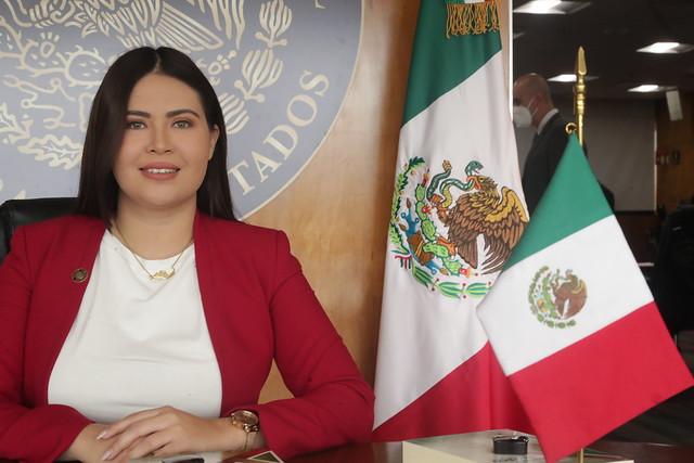 Dip. Alma Anahí González Hernández