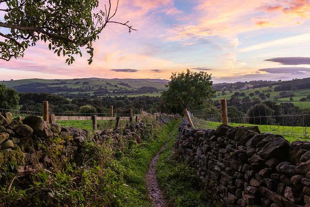Path from Storiths to Bolton Abbey