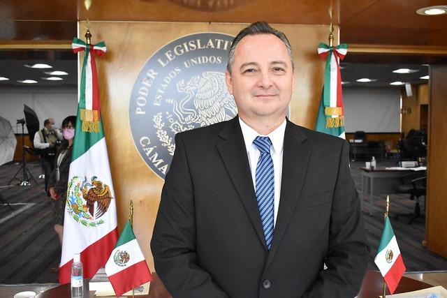 Dip. José Luis Elorza Flores