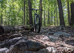 2021 Bike 180: Day 125 - Gas Plant Trail