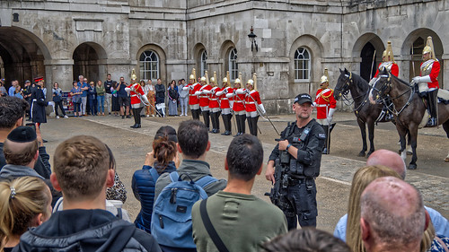 Guarding the Guards